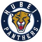 Hubei Panthers